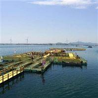 PE防腐海洋踏板设备生产线