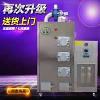 塑胶热熔机加热专用80KG生物质蒸汽发生器