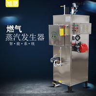 供应节能环保天然气蒸汽发生器厂型号齐全