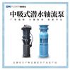 中吸軸流泵參數及價格